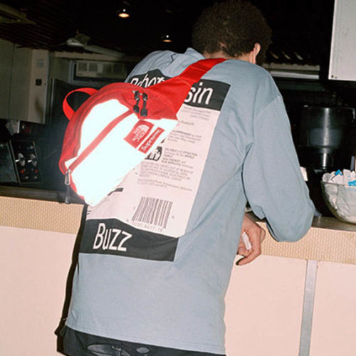 supreme-tnf-bag-11