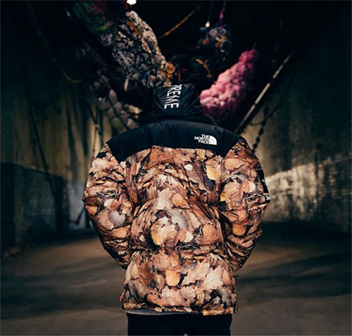 supreme-tnf-leaves-down-jacket-7