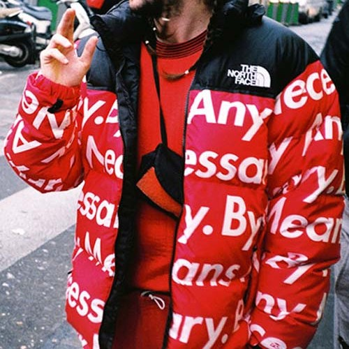 supreme-by-all-means-down-jacket-5
