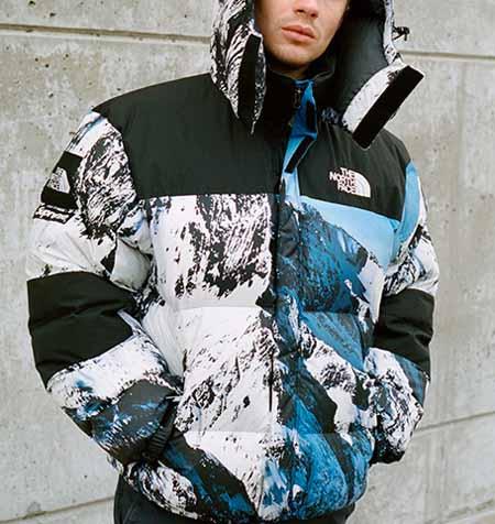 supreme-tnf-mountain-down-jacket-12