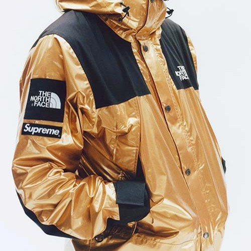 supreme-tnf-metallic-mountain-parka-jacket-9