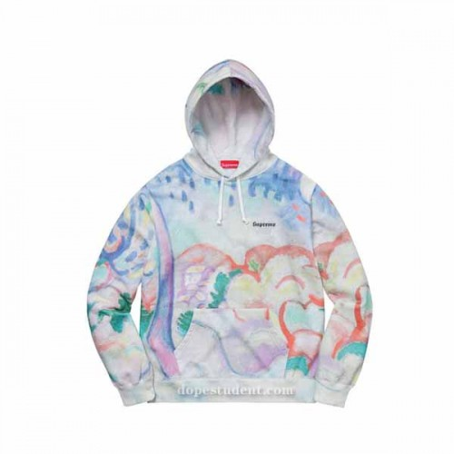 supreme-landscape-hoodie-2
