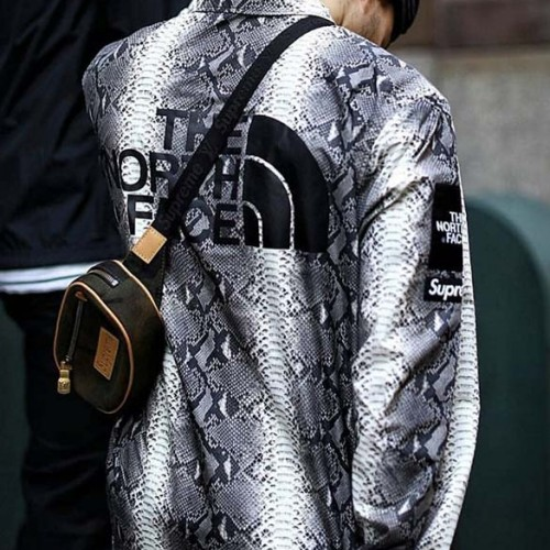 supreme-tnf-snake-jacket-1