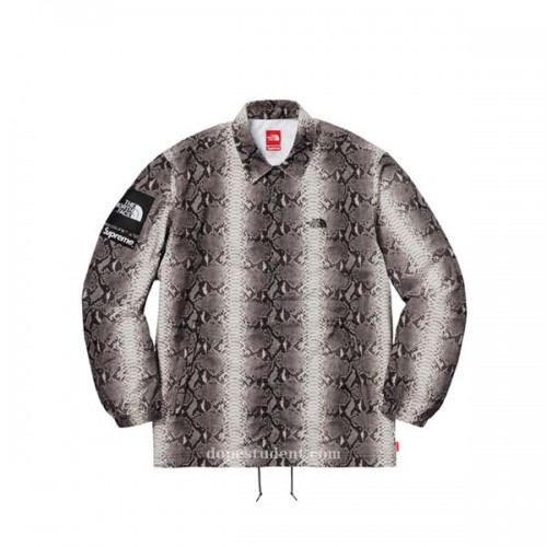 supreme-tnf-snake-jacket-2
